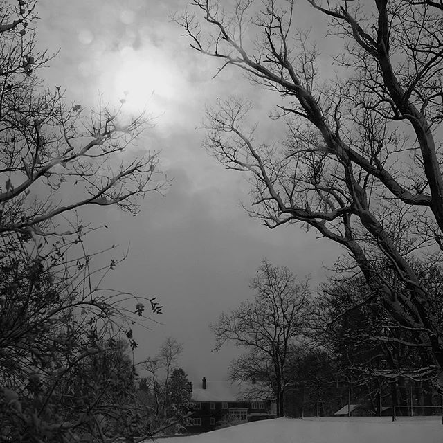 Dear Anton, The snow has arrived early in northern New York, near the mountains, where I am now. All the tropes of wintry comfort are here: the hissing fire, the hush, the spindrifts, the weighed branches embowering us in the forest, the glowing windows of distant neighbors. I would like to say that I am slowing the tempo of my mind, and that with the cold we could adopt the seasonal pose of rest and darkness. Though now does not seem the time for hibernation. The frenetic claims and accusations in the registers of our civic life, the smug victors, the sorrow and recriminations of the defeated. In all this we may read too much meaning into the results of our flawed politics, of our imperfect systems for choosing our leaders. For we are less empowered in our elections than we would like to believe. A vote is an imperfect proxy for our hopes, or for bridging the gap between needs we perceive and the systems we create to address them. Saying this does not mean the possible effects are less drastic; that the decisions we've taken won't pull apart the current world order. We have seen societies break too many times to delude ourselves that some abstract historical force will guide us to safety and progress. To your point about the next wave of categorizations of what some perceive as a new demographic, I read recently that the Latin root of colonization - colere - is to cultivate, classify or order. And it seems to me that we don't just build categories and systems for our societies in order to subdue and manage them, but that we colonize ourselves with our rationalizations and plans. That we worry and rub our edges, and fit ourselves into the descriptions we receive, or create for others. And what of the people who refuse categorization? Will they be broken? And then the counterpoint, we humans as animals in our burrows and warrens, seeking warmth and safety, twitching and sighing in our dreamy sleep. /// is an ongoing conversation between photographers Ivan Sigal and Anton Kusters. @ivansigal @antonkusters on Instagram ///