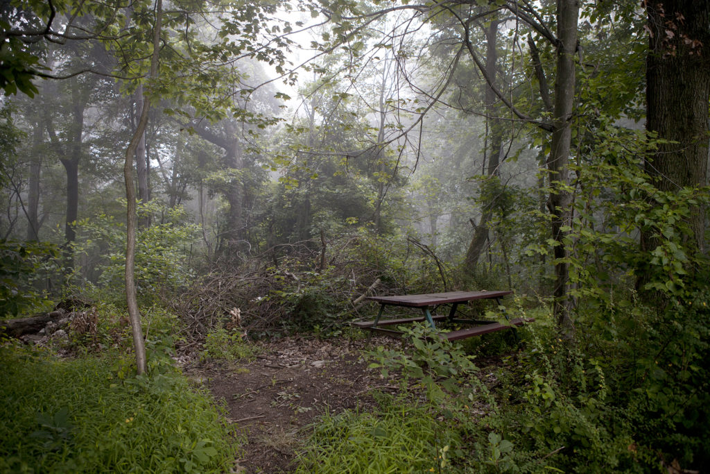 Picnic Table off Skyline Drive, Reading PA, 2012